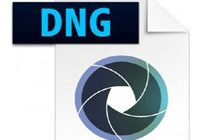 Adobe DNG Converter 12.2.1 Free Download